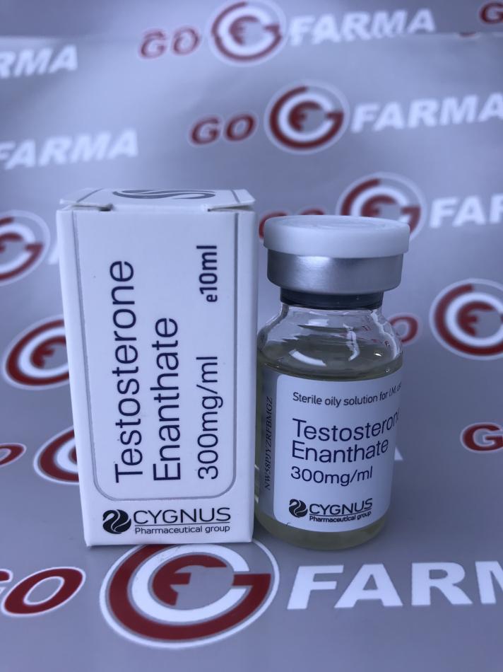 CYGNUS TESTOSTERONE E 300MG/ML - ЦЕНА ЗА 10МЛ купить в России